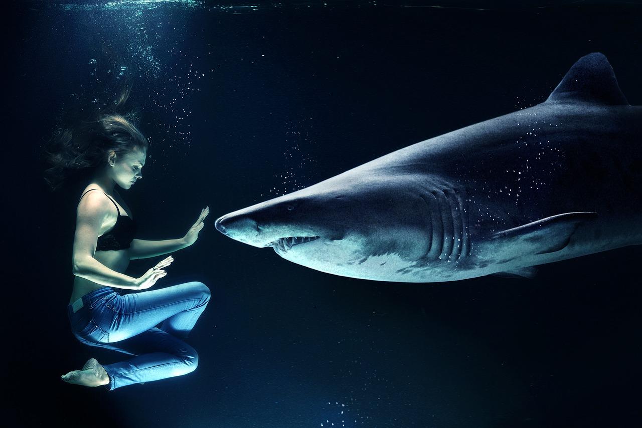 Femme avec un requin- développement personnel